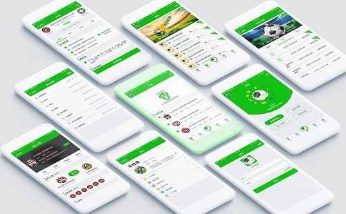 交互式app开发项目工作流程解析